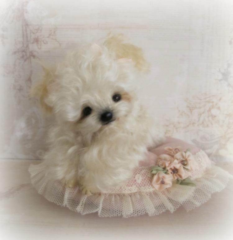 Sweet Fluffy: Sweet Fluffy OOAK Mini Miniature Artist Puppy Dog By